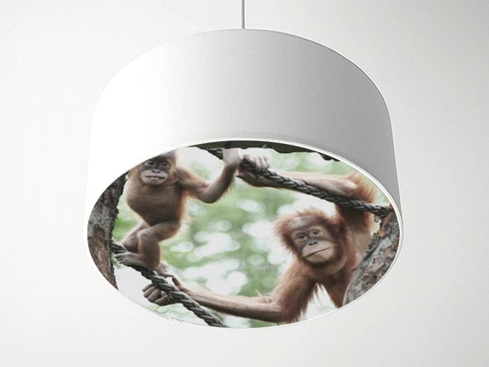 Blenderlampe Affen
