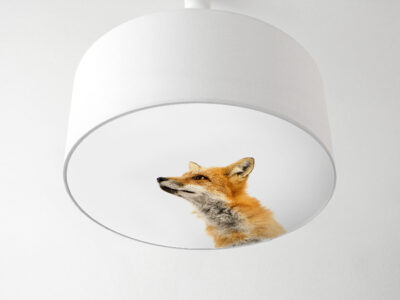 Blenderlampe Fuchs