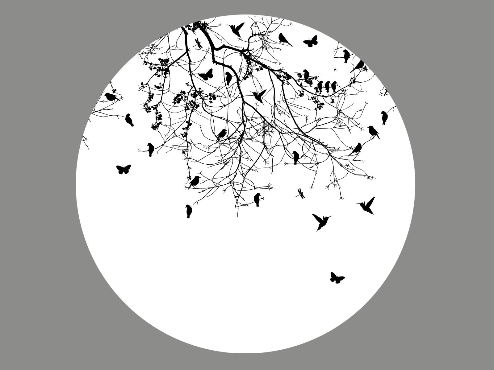 Vögelgrafik Blenderlampe-29