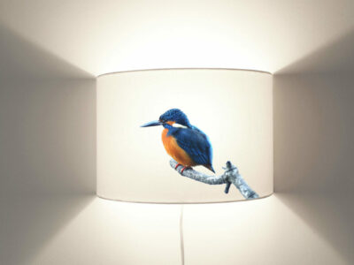Eisvogel Wandlampe-0