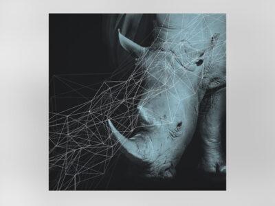 Nashorn-0