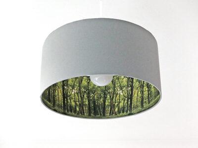 Wald-Inside -0